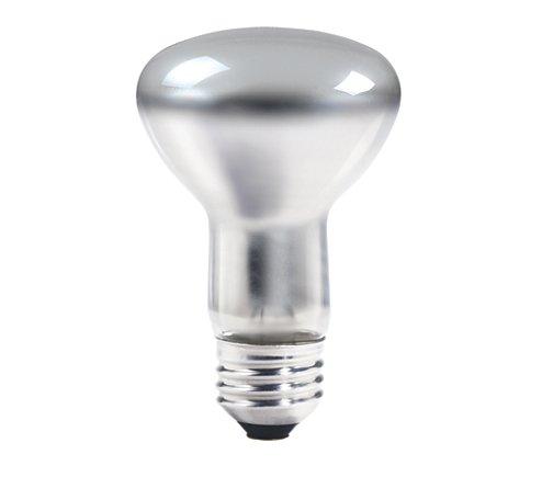 NAP 30R20/LL 120V LAMP CS=12 NAP30R20 16753