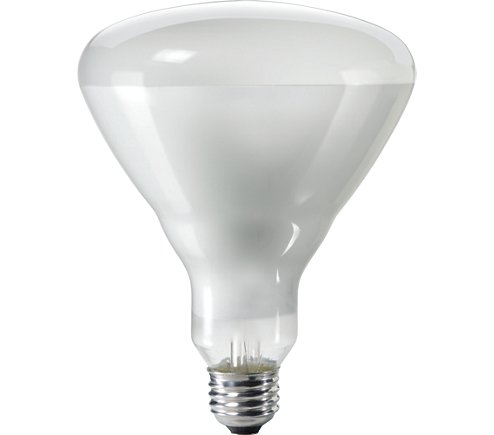 NAP 65BR/FL60-BR40 120V LAMP cs=24 NAP65BRFL 38913